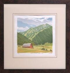 Aspen Mountain from McLain Flats 7/18 (ski runs, old red barn, hay fields, lush)