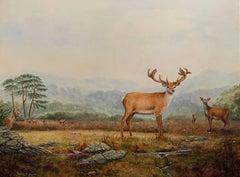 Red Deer in Scottish Highland Landscape Signed Original Oil Painting