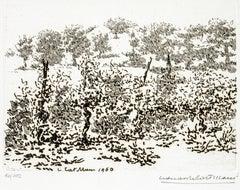The Vineyard - Original Etching by Leonardo Castellani - 1960
