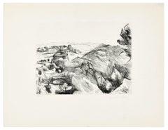 Natural Landscape - Original Etching by Léopold Lévy - XX Century