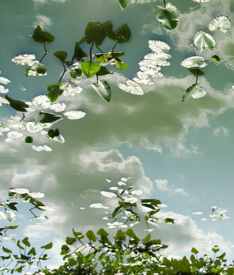 Horizon Fields LXIII (Landscape Photo of Sky Reflected in Water with Lilypads) - Photograph by Lependorf and Shire