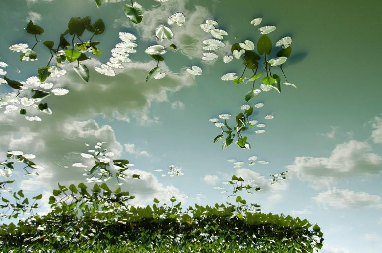 Lependorf and Shire Landscape Photograph - Horizon Fields LXIII (Landscape Photo of Sky Reflected in Water with Lilypads)