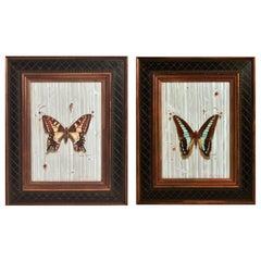 Leslie Formalik Trompe L'oeil Paintings of Butterflies, Pair, Dated 2013 and 201