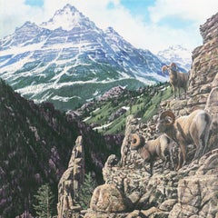 'Bighorn Rams, Rocky Mountains', Idyllwild, California Artist, Nature painter