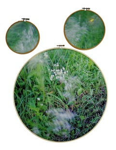 Southern Song - Three-part wood embroidery hoops, green American South landscape