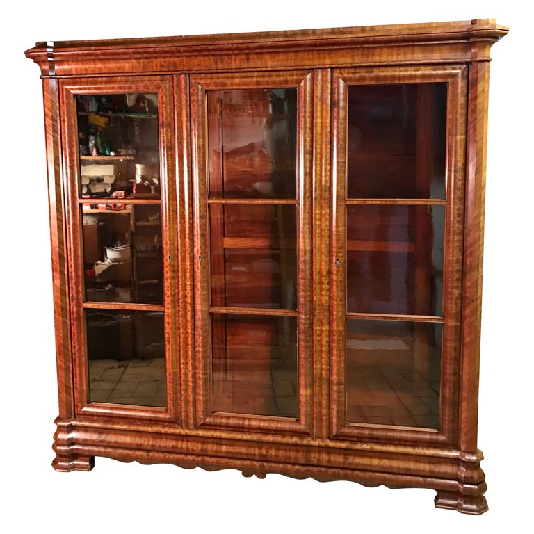 Library Cabinet, Napoleon III, France, Second Half of 19th Century For Sale