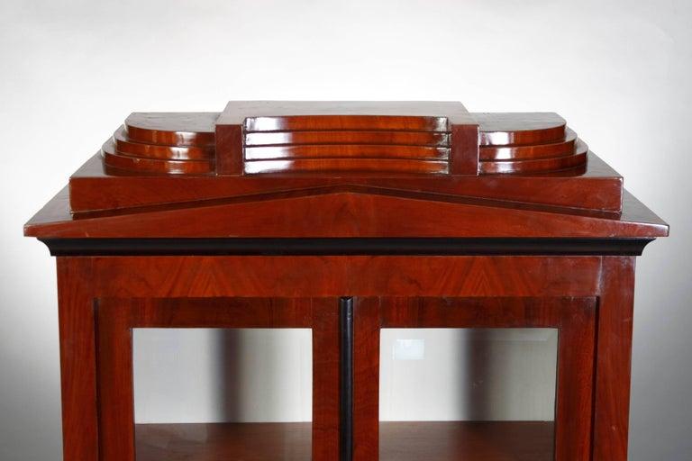Veneer Library/Display Cabinet in Biedermeier Style For Sale