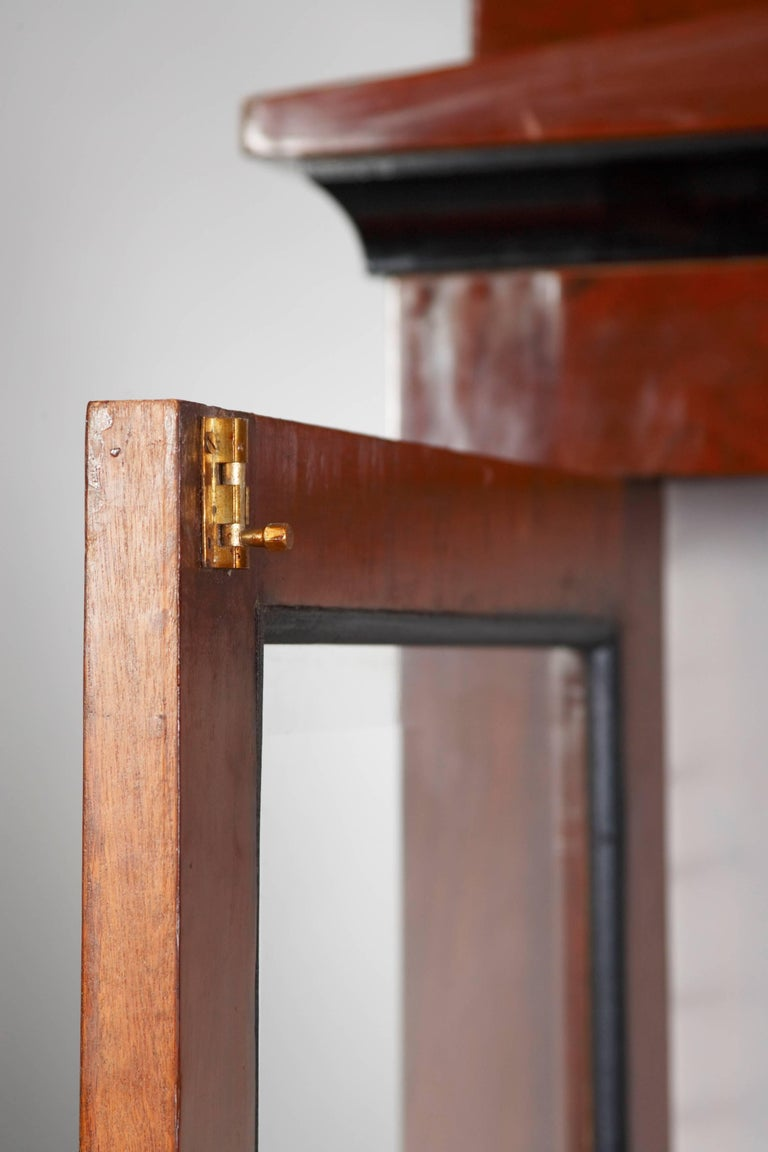 Mahogany Library/Display Cabinet in Biedermeier Style For Sale