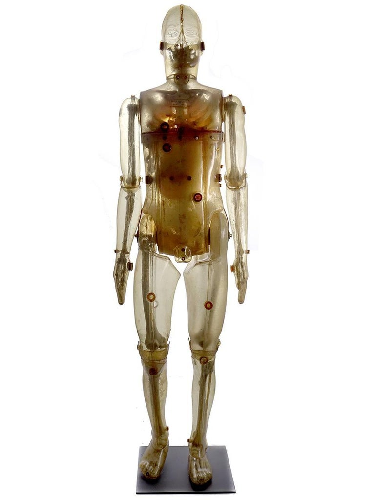 Industrial Life Size Articulating X-Ray Dummy, Cold War Icon For Sale