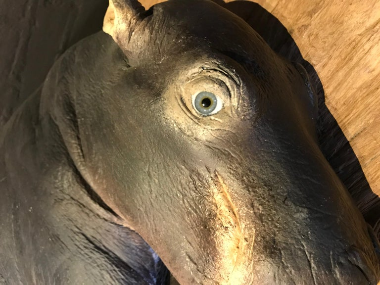 Lifelike Replica of a Hippo Calf In Excellent Condition For Sale In Eindhoven, NL