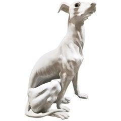 Lifesize 1940s Italian Ceramic Greyhound