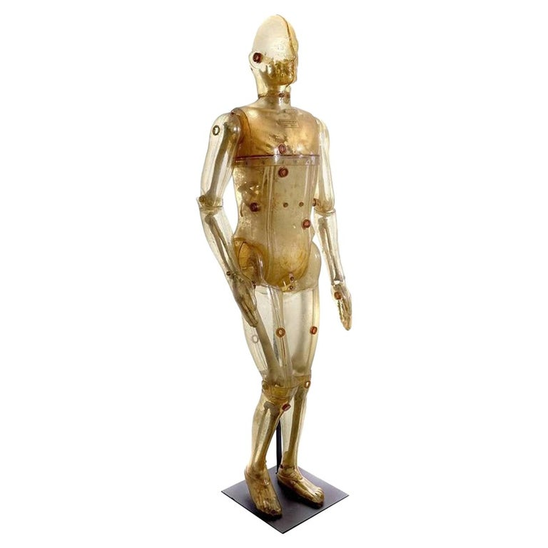 Lifesize Articulating X-Ray Dummy, Cold War Icon For Sale