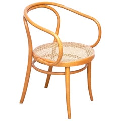 Ligna Bend Wood Armchair