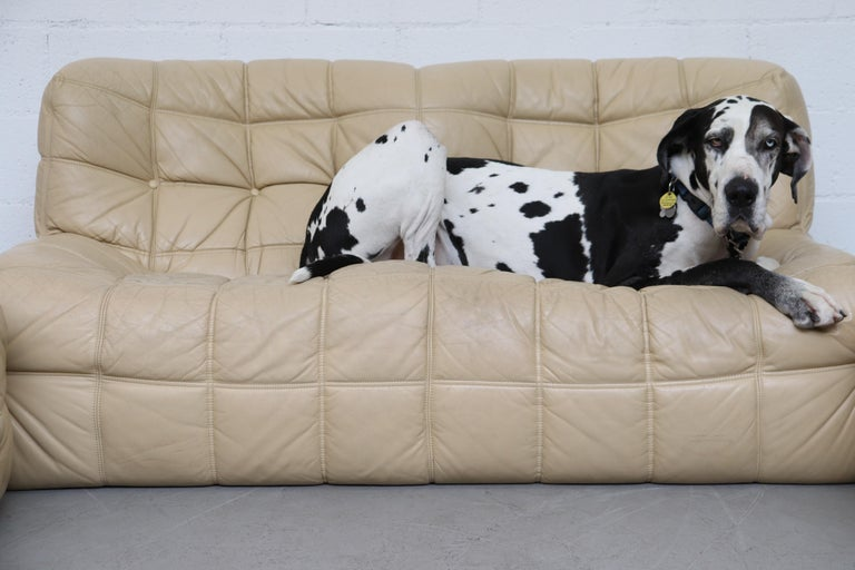 Ligne Roset Kashmina Beige Leather 3-Piece Sofa Set