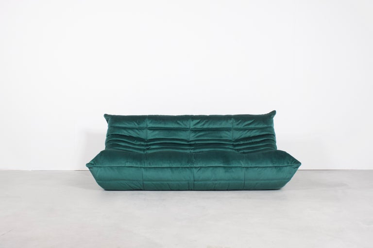Togo three-seat by Michel Duraroy for Ligne Roset in excellent condition.   Two sofas available  Reupholstered in a high quality dark green colored velours which gives a beautiful and rich effect.  The Togo features an ergonomic design with