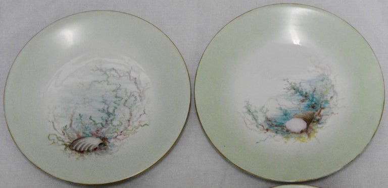 Hand-Painted Limoges T & V French Plates with Seashell Paintings by M.H. Dismukes in 1898 For Sale