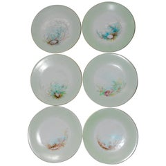 Limoges T & V French Plates with Seashell Paintings by M.H. Dismukes in 1898