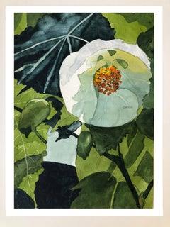 Flower portrait studies #1 (Edn 5)