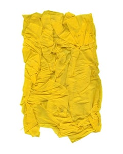 Linda Lindroth, Yellow Crepe, color field still life photograph, 2016