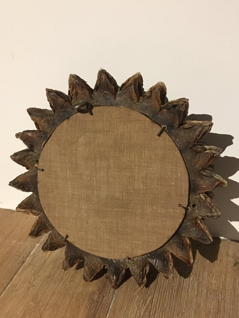 Line Vautrin, Mirror 'Cactus' In Good Condition For Sale In Paris, FR