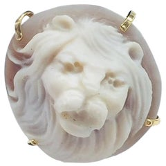 Lion Head Cameo Rose Gold Sterling Silver Ring