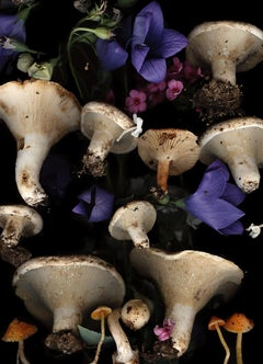 Lactarius with Bell Flowers (Modern Digital Mushroom and Flower Still Life)