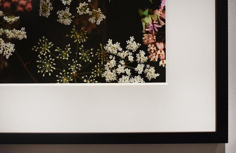 Milkweed Prairie Still Life (Modern Digital Flower Still Life Photograph) For Sale 2