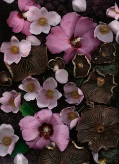 Russula with Rose of Sharon (Modern Digital Floral/Fungi Still Life)
