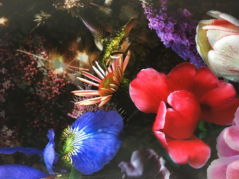 Still Life with Hummingbirds, Botanical Still Life Photograph with Bird, Crystal For Sale 3