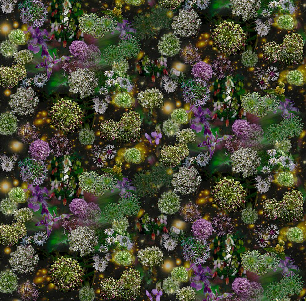 The Sky is Wide Open: Abstract Still Life Photograph of Purple & Green Flowers