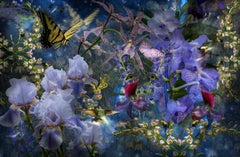 These are the Flowers that Seek the Skies, Photograph, Purple Flowers, Butterfly