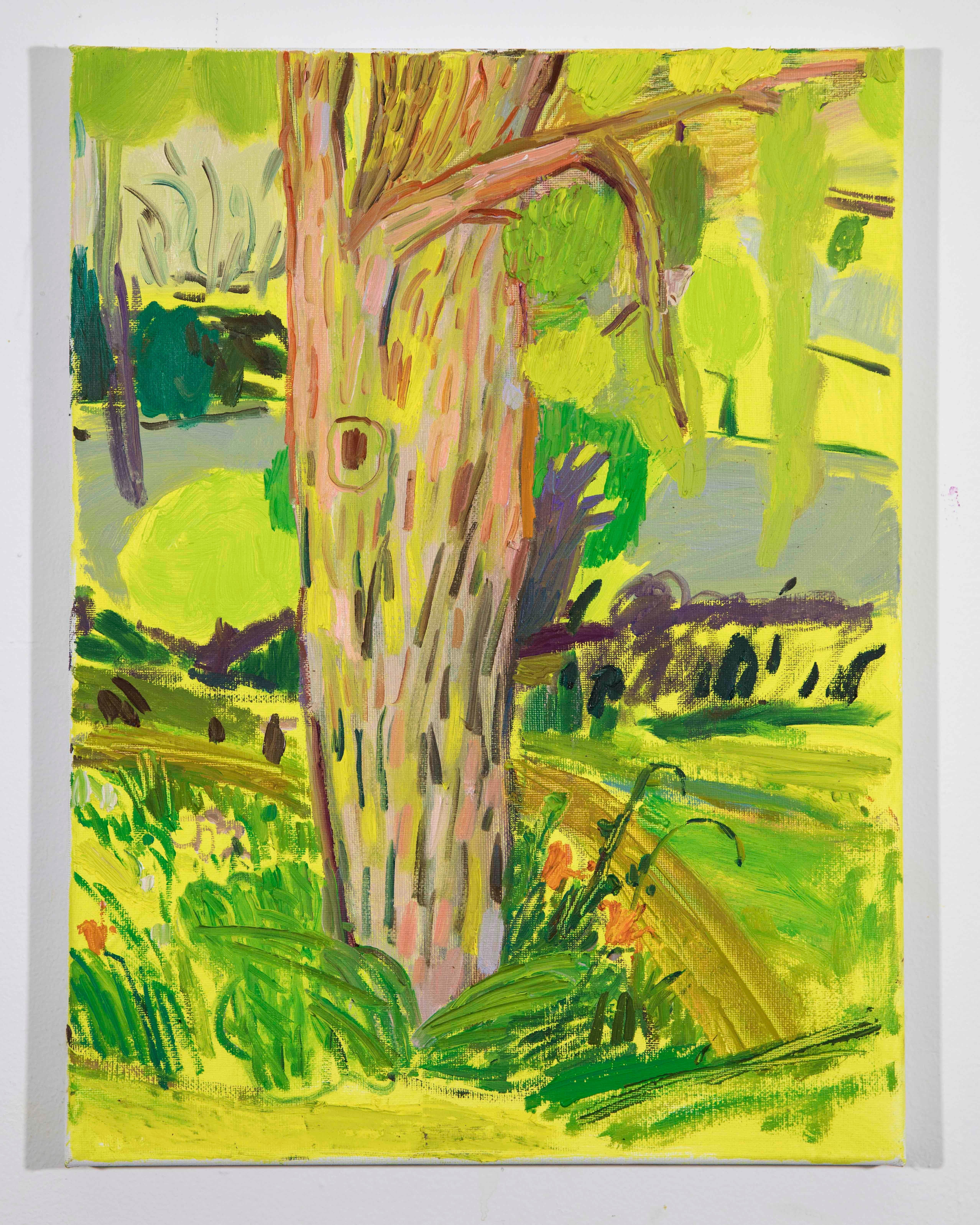 Landscape Color Study 1