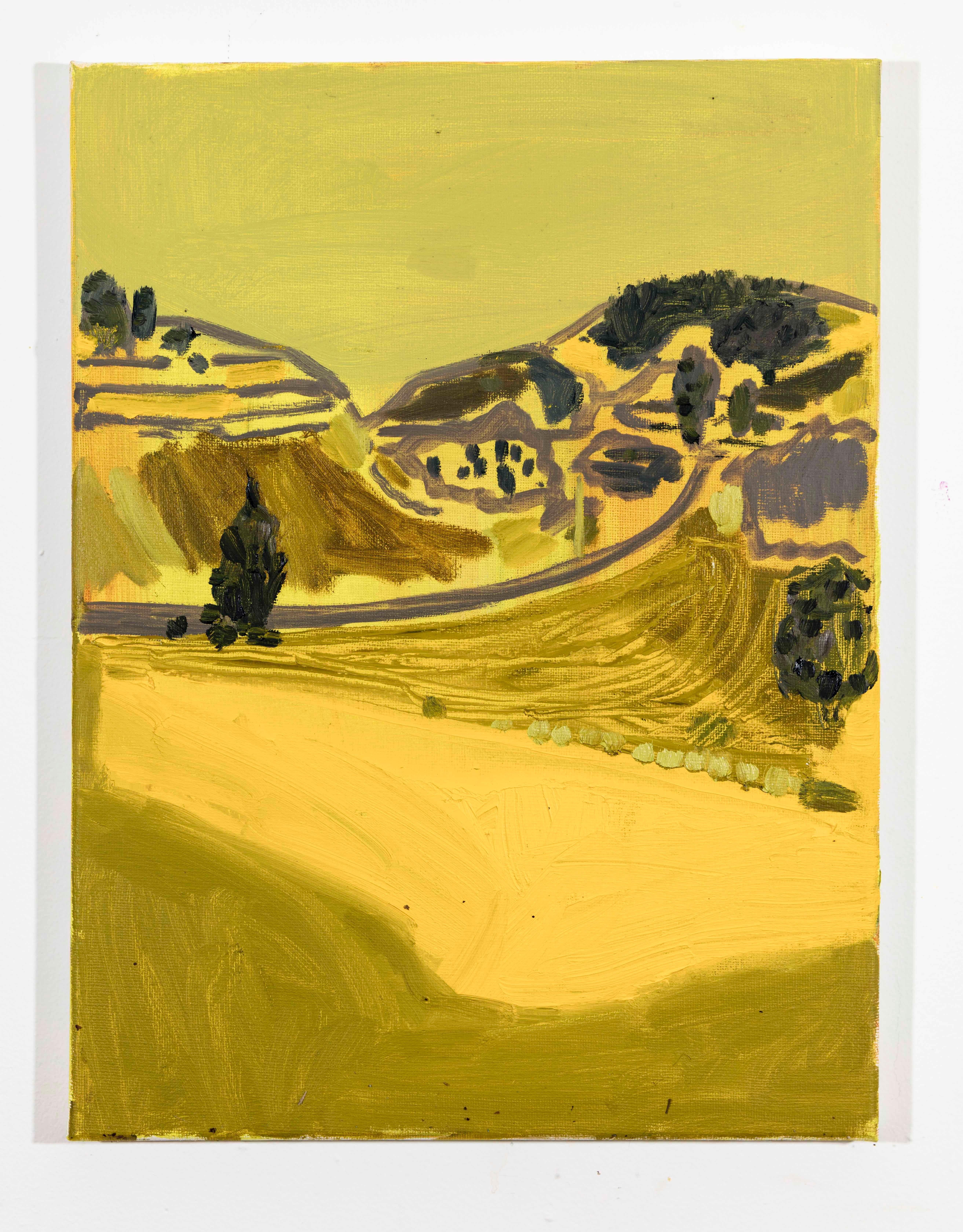 Landscape Color Study 14