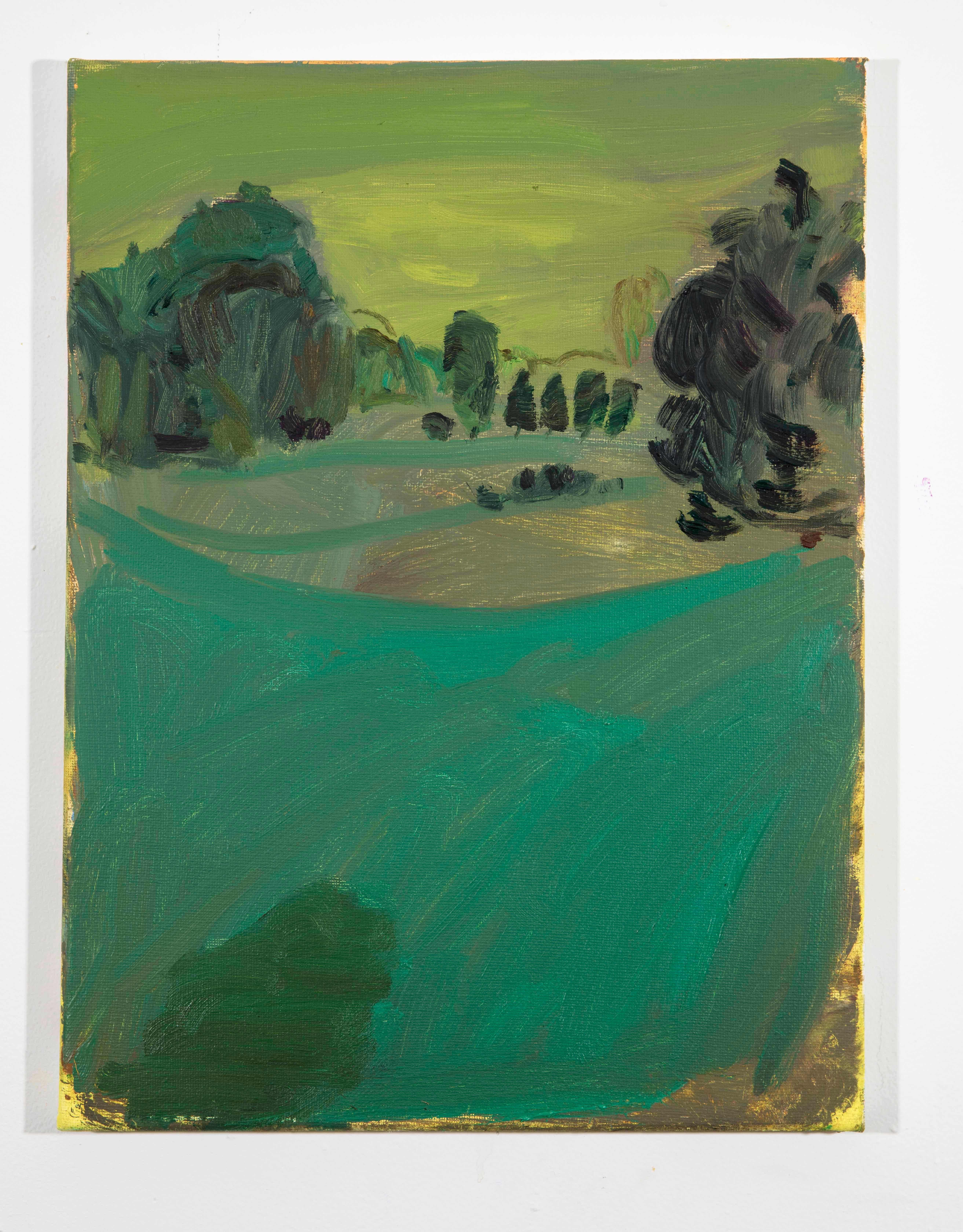Landscape Color Study 16