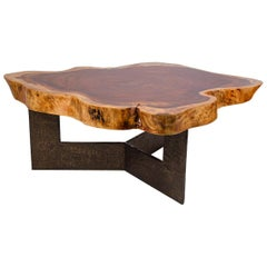 Live Edge Coffee Table in Parota Wood Tree Trunk with Brutalist Bronze Base