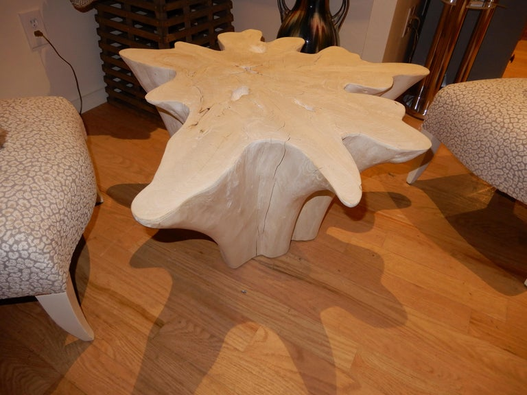 An exceptional find in this organic massive form. Limbs of shapely teak wood root bleached and cured over one year. This form works well in many room environments, including a luxury bathroom setting.