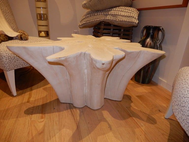 Minimalist An exceptional Live Edge / Free Edge Bleached Teak Wood Root Coffee Table For Sale