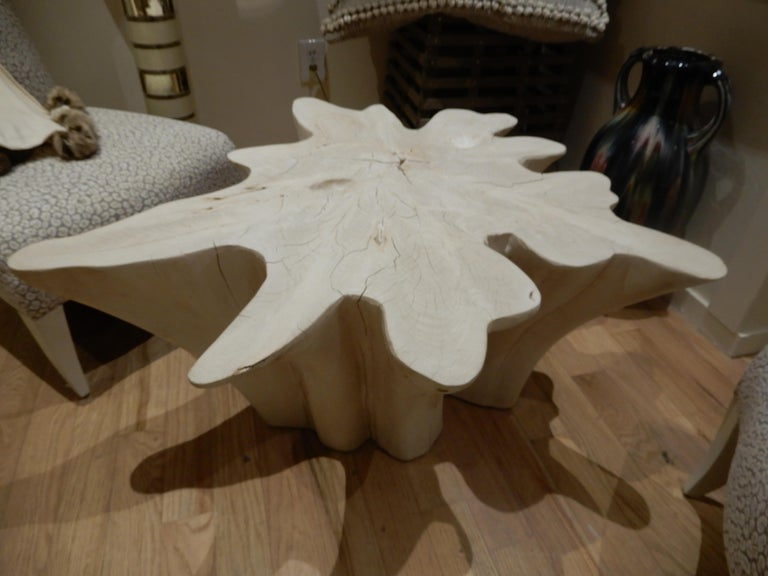An exceptional Live Edge / Free Edge Bleached Teak Wood Root Coffee Table In Excellent Condition For Sale In Bellport, NY