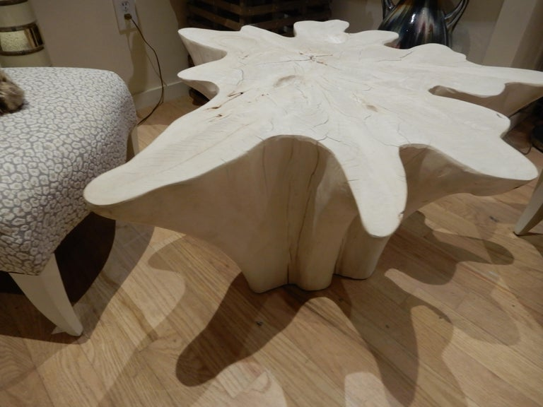 An exceptional Live Edge / Free Edge Bleached Teak Wood Root Coffee Table For Sale 3