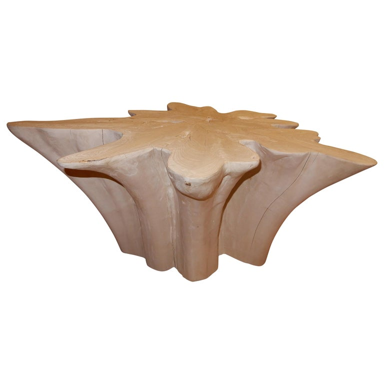 An exceptional Live Edge / Free Edge Bleached Teak Wood Root Coffee Table For Sale