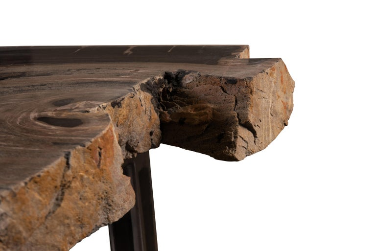 Organic Modern Live Edge Single Slab Petrified Wood Table with Base For Sale