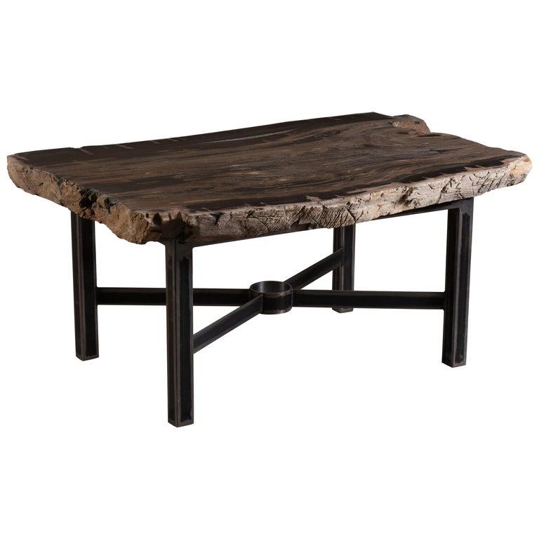Live Edge Single Slab Petrified Wood Table with Base For Sale