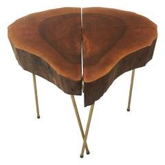 Live Edge Tree Trunk 'Heart' Table Pair, Carl Auböck Style, Austria 1950s