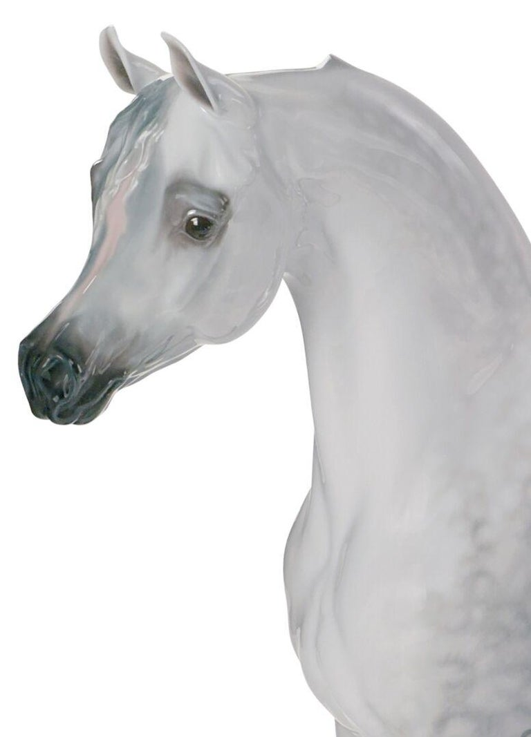 Glossy porcelain animal figurine of limited series of purebred Arabian horse with thick fur on a wooden base. Portrait of a purebred grey Arabian horse, capturing in porcelain all its distinctive features: finely chiseled bone structure, concave