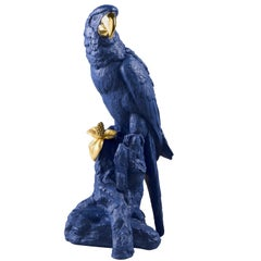 Lladro Macaw Bird Sculpture in Blue and Gold by Joan Coderch