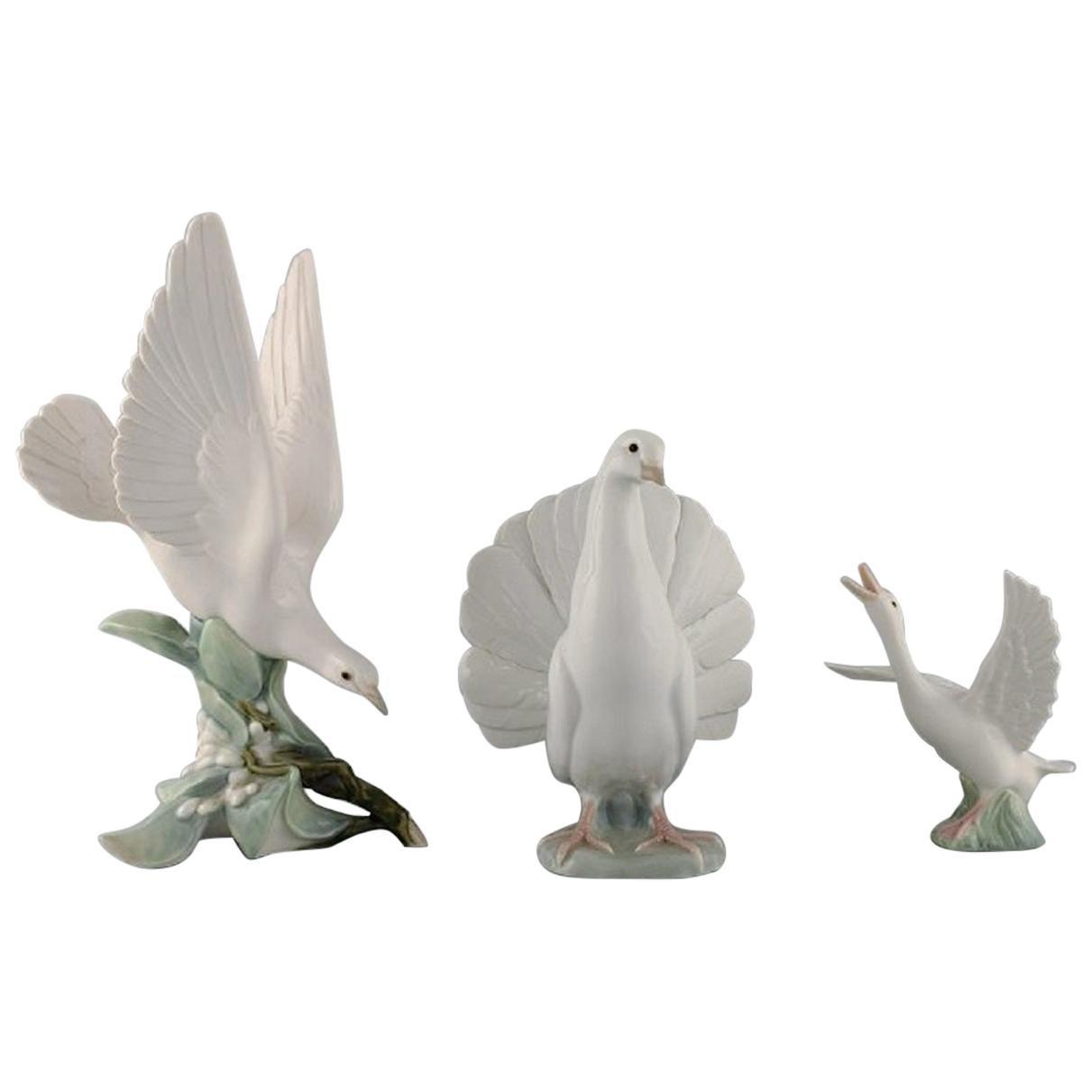 Lladro, Spain, Three Porcelain Figurines, Birds, 1970s-1980s