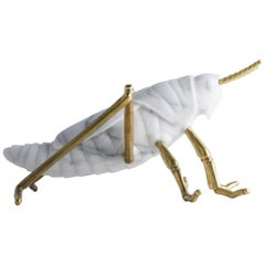 Locusta Migratoria, Grasshopper in White Arabescato Marble Made in Italy
