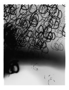 Underlight Studies, #13 by Lois White, archival pigment print, 26x36in