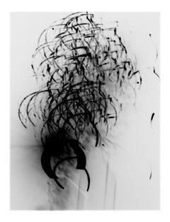 Underlight Studies, #45 by Lois White, archival pigment print, 40x52in