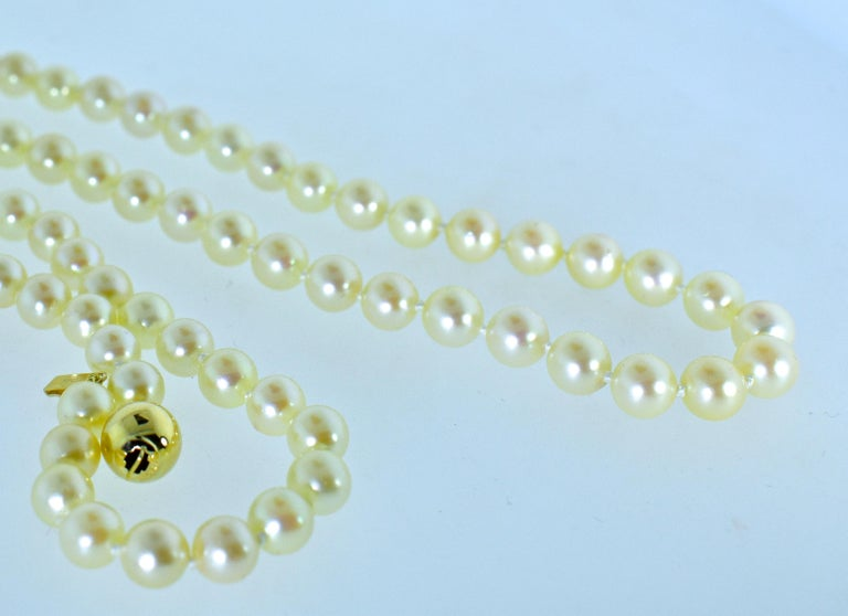 Contemporary Long Strand of Fine Cultured Pearls For Sale